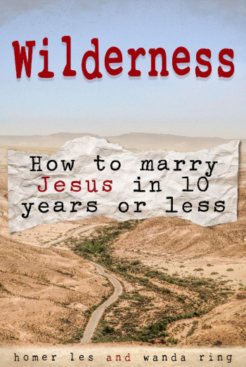 Wilderness - How to Marry Jesus in 10 Years or Less
