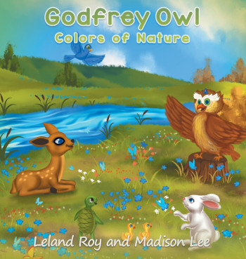 Godfrey Owl: Colors of Nature