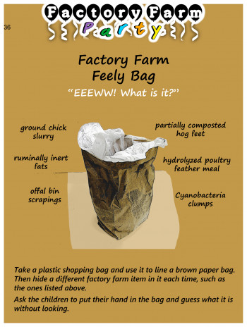 """Factory Farm Feely Bag"""
